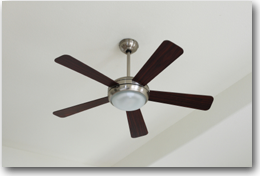 Ceiling Fans | PDX Electric